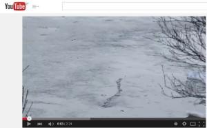 iceland ice monster